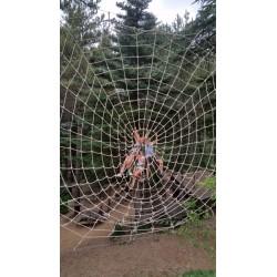 Toile d'araignée 6m